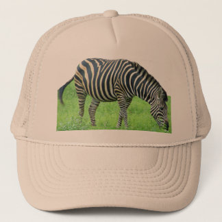 Zebra Safari Hat