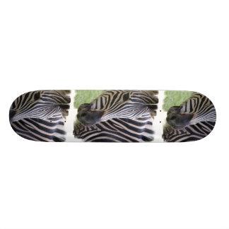 Zebra Skateboard