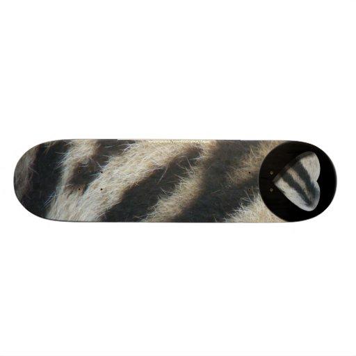 Zebra Skate Decks
