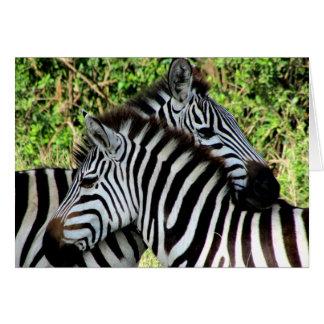 zebra snuggles card