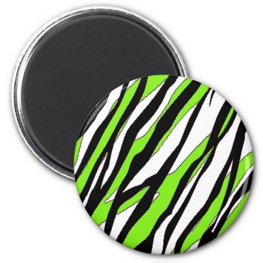 Zebra Stripe and Lime Green Stripes Fridge Magnets