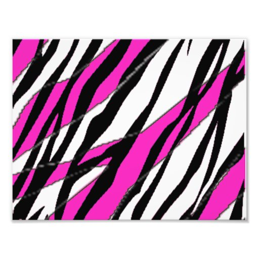 Zebra Stripe and  Neon Pink Abstract Stripes Art Photo