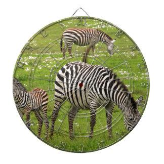 Zebra Stripes African Safari Nature Destiny Dartboards