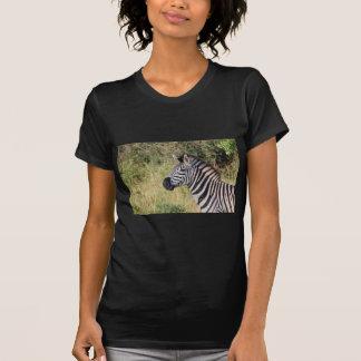 Zebra Stripes Animal African Safari Destiny T Shirts