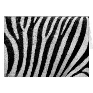 Zebra stripes black & white texture photograph greeting card