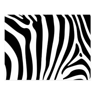 Zebra stripes in black and white pattern postcard