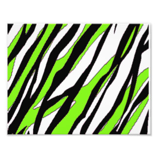 Zebra Stripes with Abstract Lime Green Stripes Photographic Print