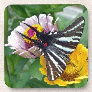Zebra Swallowtail+Japanese Beetle Coaster