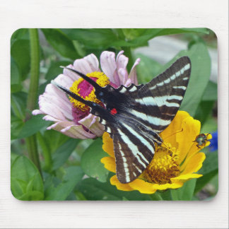 Zebra Swallowtail+Japanese Beetle Mouse Pad