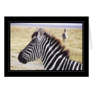 Zebra Up Close Greeting Card