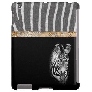 Zebra & Zebra Patterned