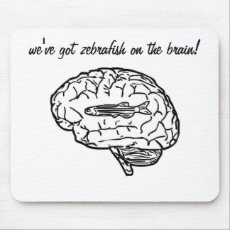 Zebrafish on the brain mousepad