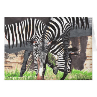Zebras Greeting Cards