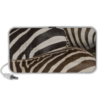 Zebras' (Equus quagga) stripes, Masai Mara, Speaker