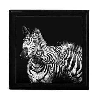Zebras Gift Box