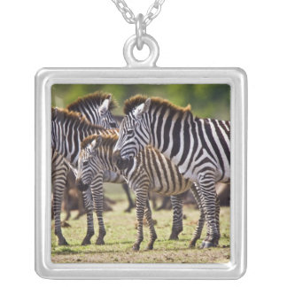Zebras herding in the fields of the Maasai Mara Square Pendant Necklace