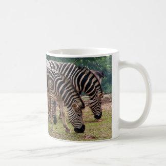 zebras in a wild animal zoo coffee mug