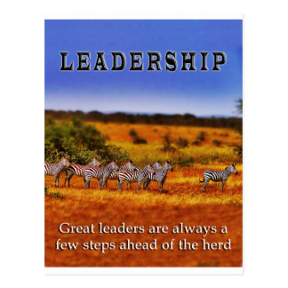 Zebras on Leadership (2) Postcard