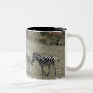 Zebras on the Move Mug