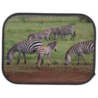 Zebras on the Serengetti Plains, Equus quagga, Floor Mat