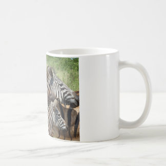 Zebras South Africa Coffee Mug