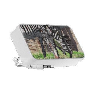 Zebras iPhone Speakers