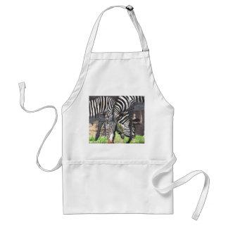 Zebras Standard Apron