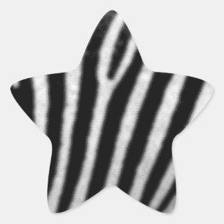 Zebras Star Sticker