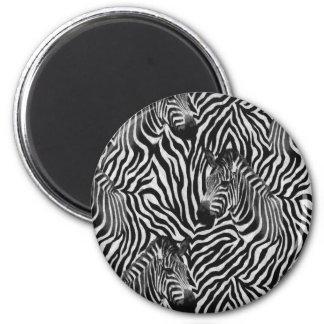 Zebtas Magnet