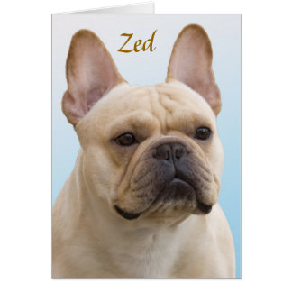 Zed Note Card V2