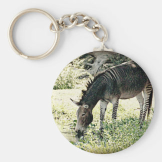 """Zedonk"" Basic Round Button Key Ring"