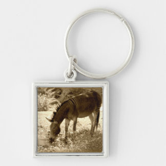"""Zedonk"" Silver-Colored Square Key Ring"