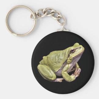Zen Frog Cute Green Meditation Treefrog Black Key Ring