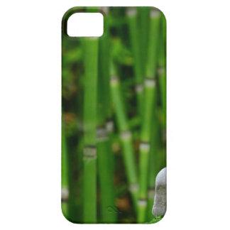 Zen Garden Meditation Monk Stones Bamboo Rest iPhone 5 Cover