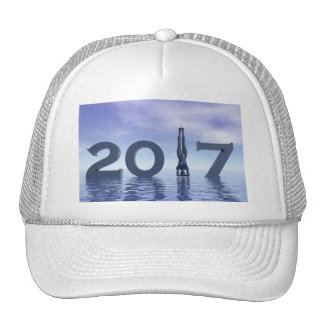 Zen happy new year 2017 - 3D render Cap