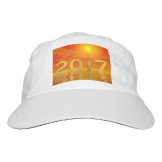 Zen happy new year 2017 - 3D render Hat