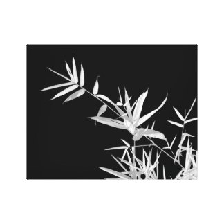 Zen Infrared Bamboo Canvas Print