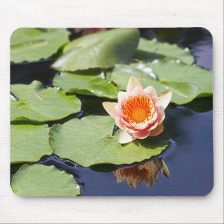 Zen Pond Mouse Pad
