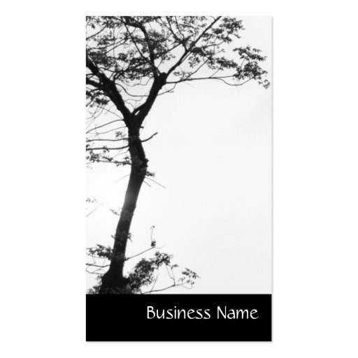 Zen Tree Balance l Nature Photography Business Card