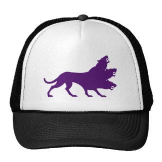 Zerberus cerberus Kerberos Hats