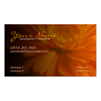 ZeSTiVE Business & Personal Card Pack Of Standard Business Cards