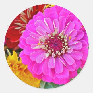 Zinnia flower classic round sticker