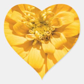 Zinnia Heart Sticker
