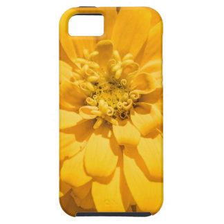 Zinnia iPhone 5 Cases