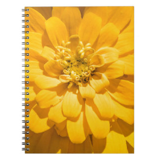 Zinnia Notebook