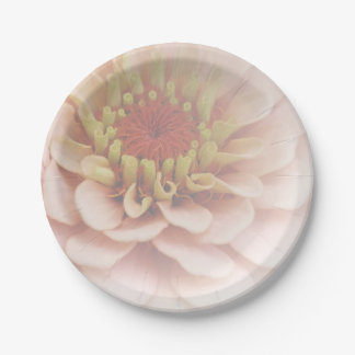 Zinnia Paper Plates Pale Peach