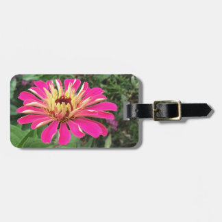 ZINNIA - Vibrant Pink and Cream - Luggage Tag