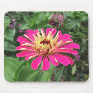 ZINNIA - Vibrant Pink and Cream - Mouse Pad
