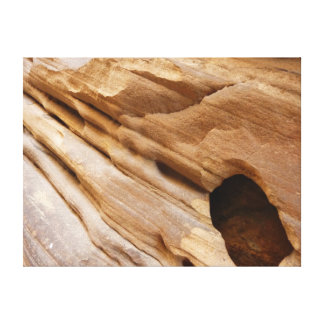 Zion Canyon Wall I Abstract Nature Photography Canvas Print