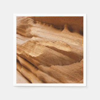 Zion Canyon Wall II Red Rock Abstract Photography Paper Serviettes
